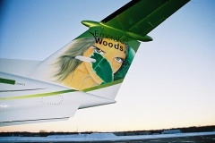 King-Air-200-Paint-4