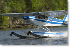 Piper Cub on Wipline 2100 Floats
