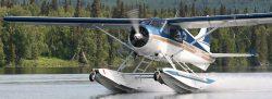 de Havilland Beaver on Wipline 6100 Floats